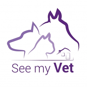 startup See my Vet